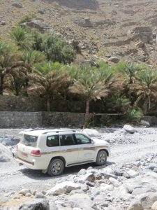 A 4x4 car driving into Wadi Ghul with palm trees in the background